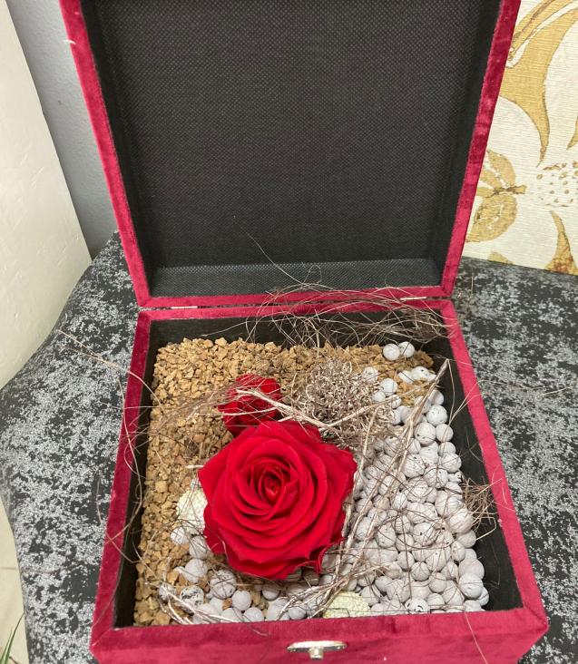 Le-rose-del-deserto-1