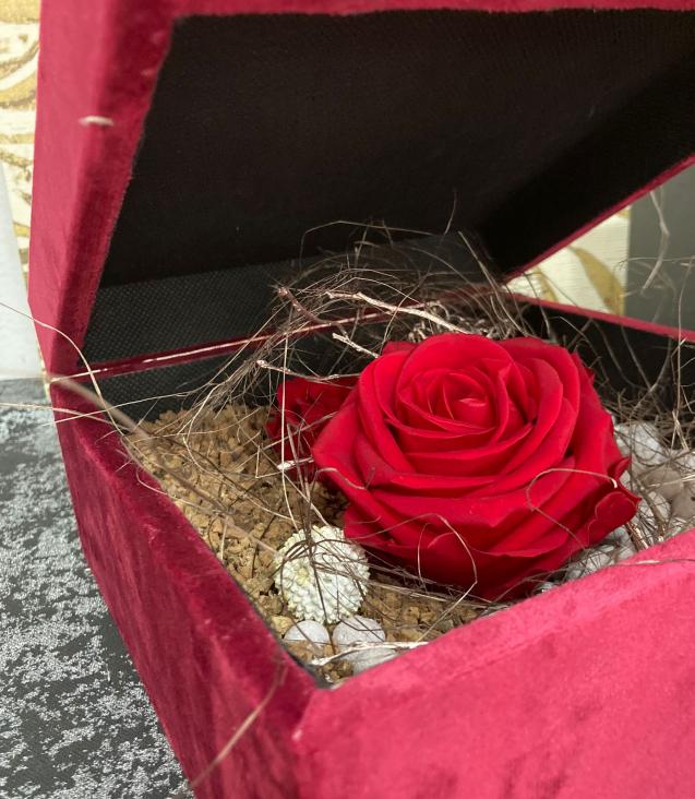 Le-rose-del-deserto-2